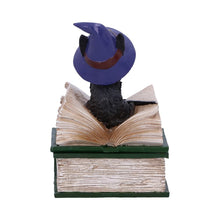 Load image into Gallery viewer, Binx Small Witches Familiar Black Cat and Spell book Figurine Box