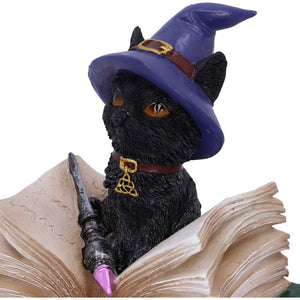 Binx Small Witches Familiar Black Cat and Spell book Figurine Box