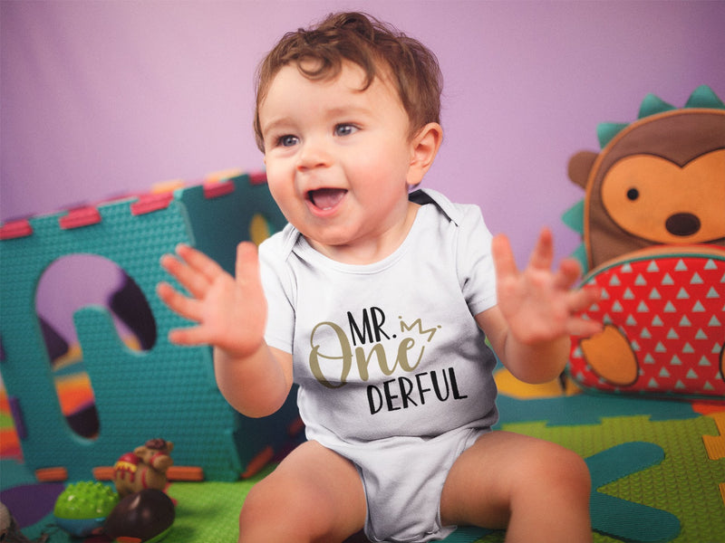 1st Baby Boy Bodysuit  - First Birthday Outfit - Mr. Onederful