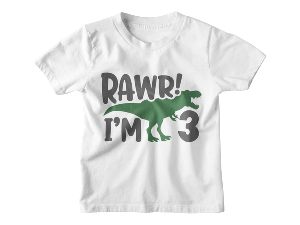 3rd Birthday Boy T-Shirt - Rawr I'm Three