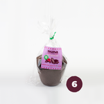 Muffin Doble Chocolate Vegano / 6 Unidades