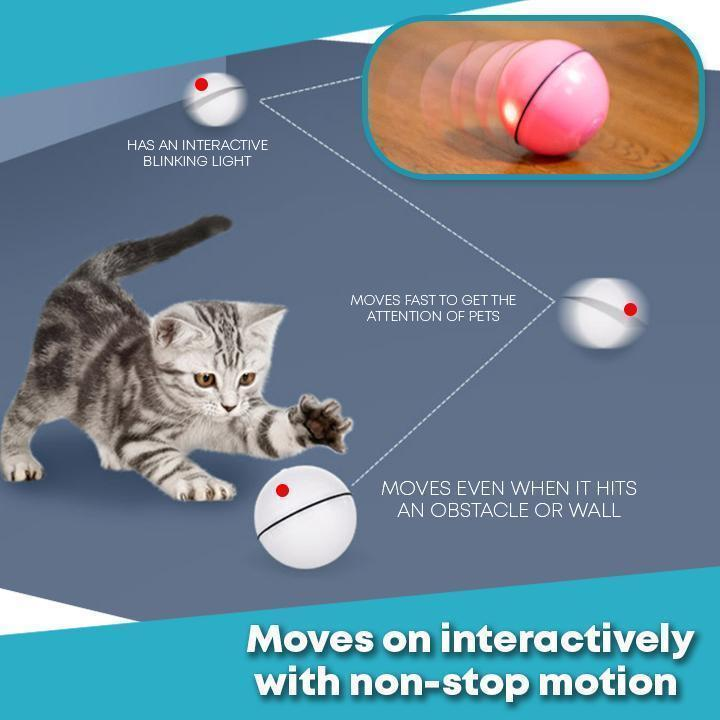 Interactive Cat Rolling Ball