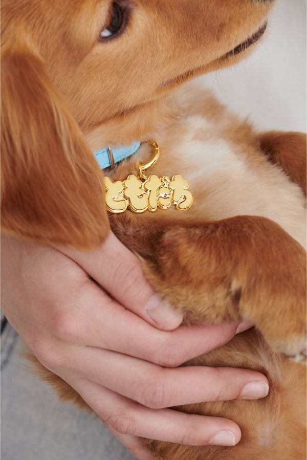 FRIEND GOLD (DOG CHARM)