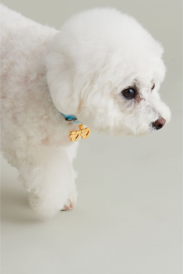 FLUFFY GOLD (DOG CHARM)