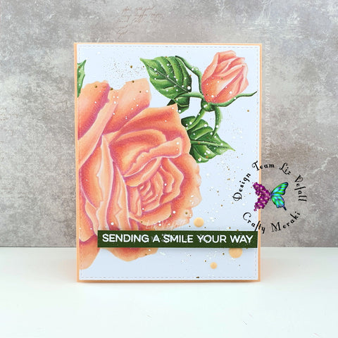 Sympathy Rose Colorado Craft
