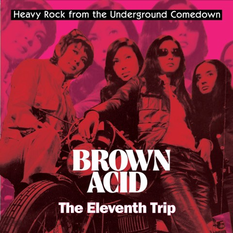EZRDR-124:  Brown Acid - The Eleventh Trip (purple record)