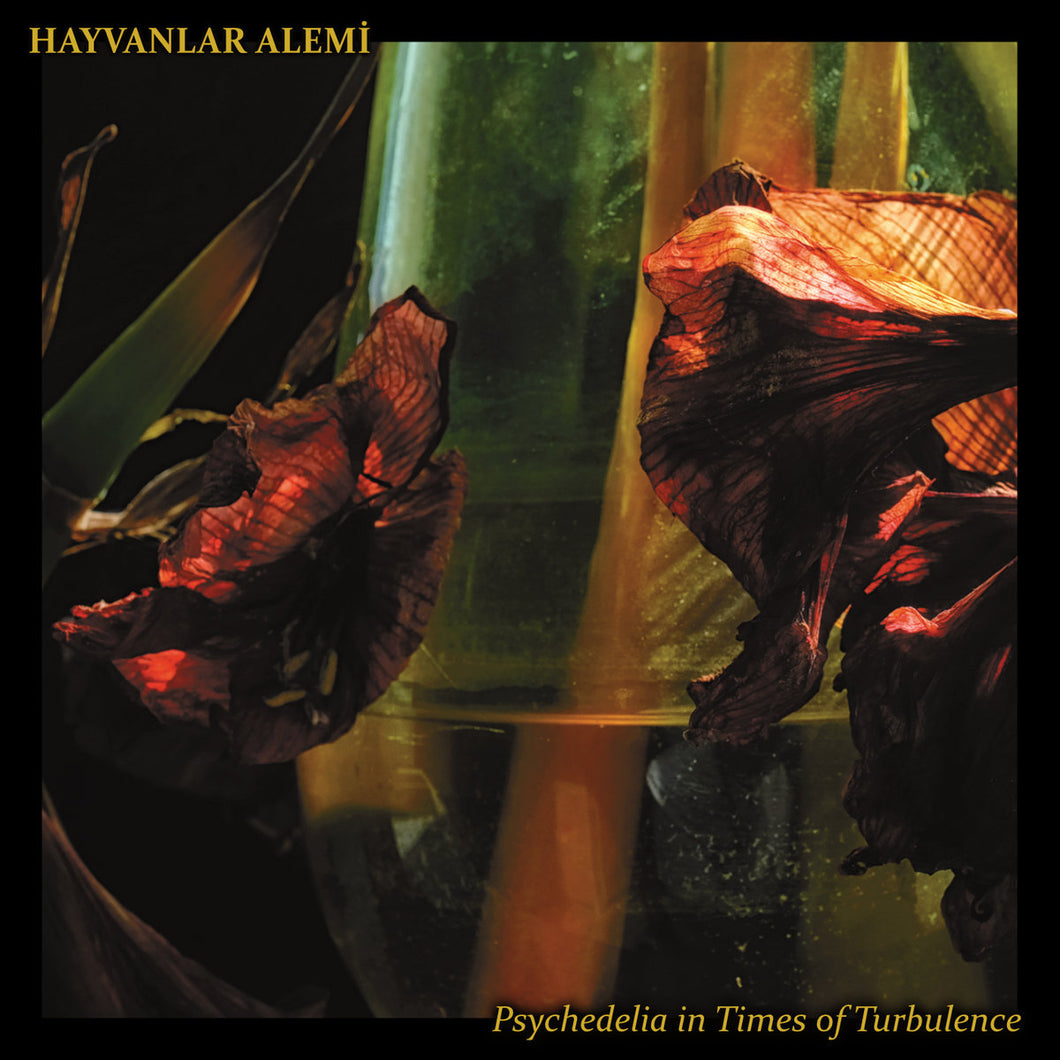 SSR-069:  Hayvanlar Alemi - Psychedelia in Times of Turbulence (compact disc)