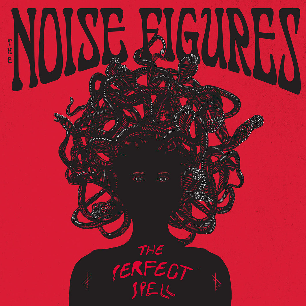The Noise Figures - The Perfect Spell (black record) *Import