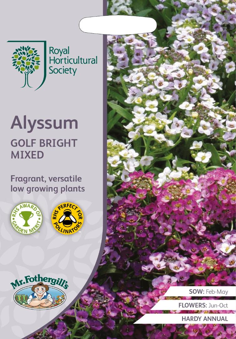 RHS- Alyssum Golf Bright Mixed