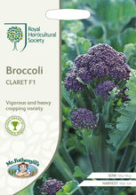Load image into Gallery viewer, RHS- Broccoli Claret F1