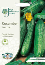 Load image into Gallery viewer, RHS- Cucumber Emilie F1