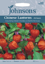 Load image into Gallery viewer, Chinese Lanterns- Physalis
