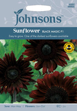Load image into Gallery viewer, Sunflower Black Magic F1