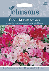 Godetia Dwarf Jewel Mixed