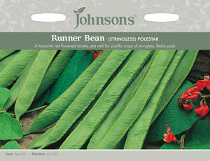 Runner Bean (Stringless)- Polestar