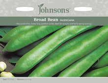 Load image into Gallery viewer, Broad Bean Valenciana