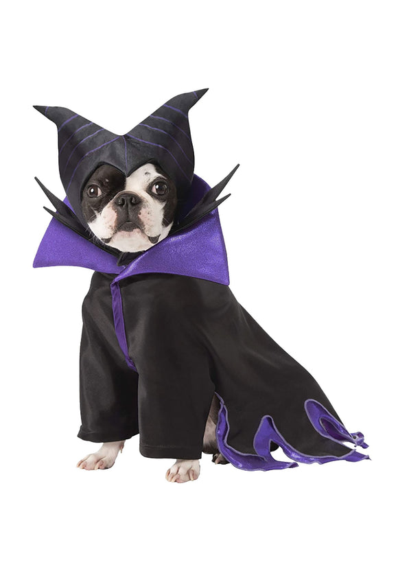 Disney Maleficent Dog Costume