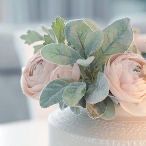 Powder pink ranunculus