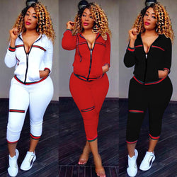 Womens 2 PCS Tracksuits Set Ladies 2019 new Brand Autumn Long Sleeve Casual O-Neck Hoodies +long pants Plus Size спортивный кост