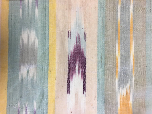 Miki - Light Colored Striped iKat