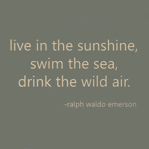 live in the sunshine, swim the sea, drink the wild air. -ralph waldo emerson