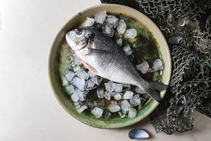 Improving Brain Health with Fish and Extra Virgin Olive Oil