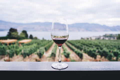 red wine in front of a vineyard