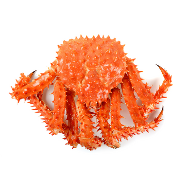 Live Alaskan King Crabs
