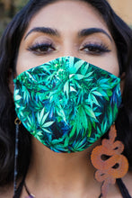 Load image into Gallery viewer, Face Mask in Northern Lights Sativa