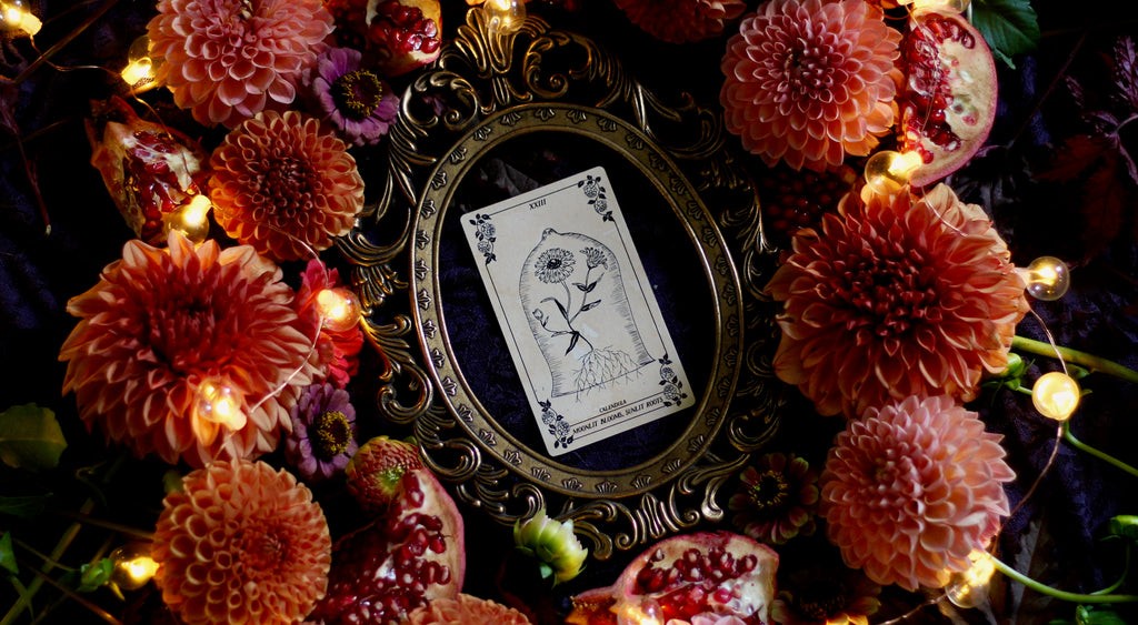 botanical oracle deck