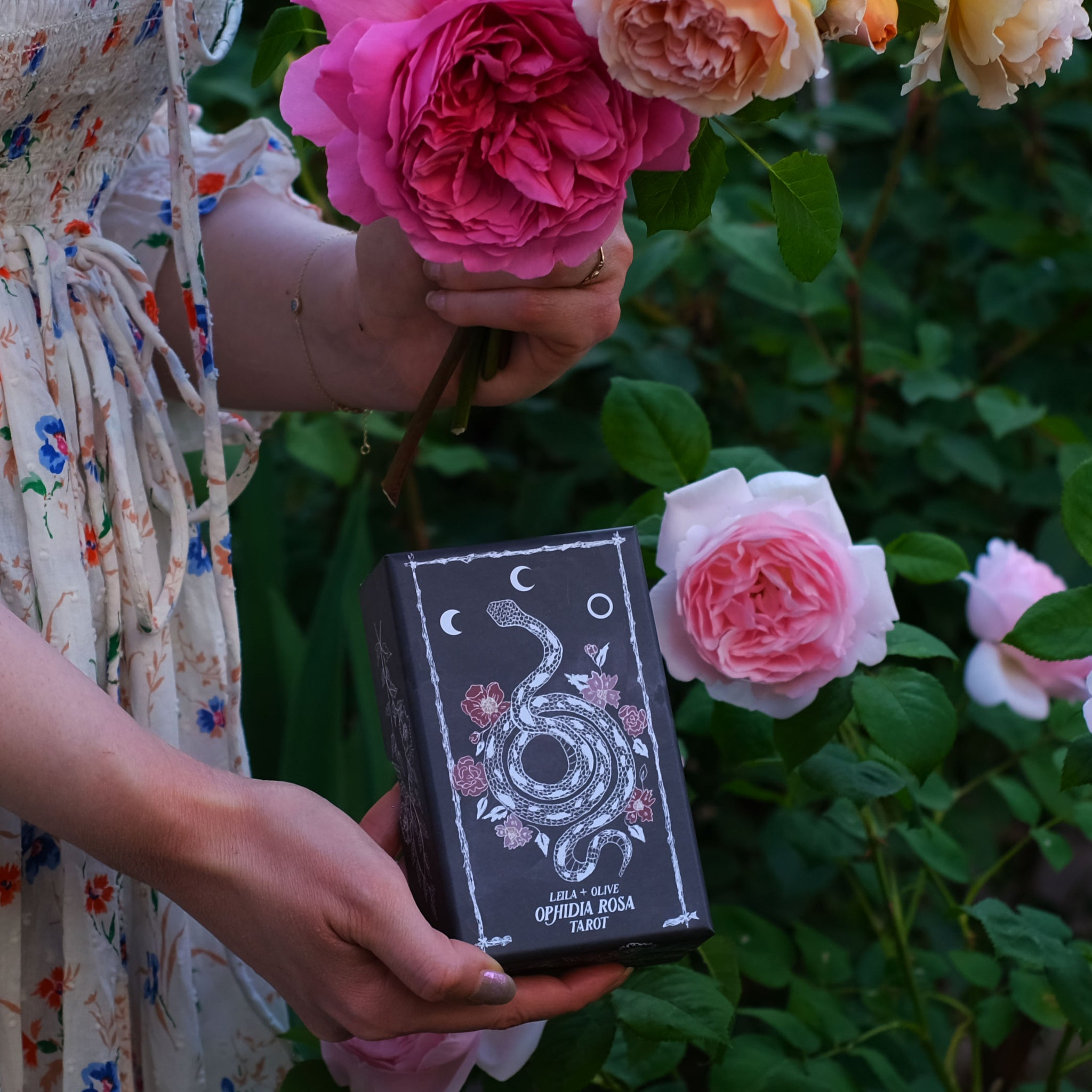 Botanical Tarot deck, the Ophidia Rosa, is illustrated by hand and weaves together the magic of the garden, botanicals, flora and the plant kingdom with traditional Tarot meanings.