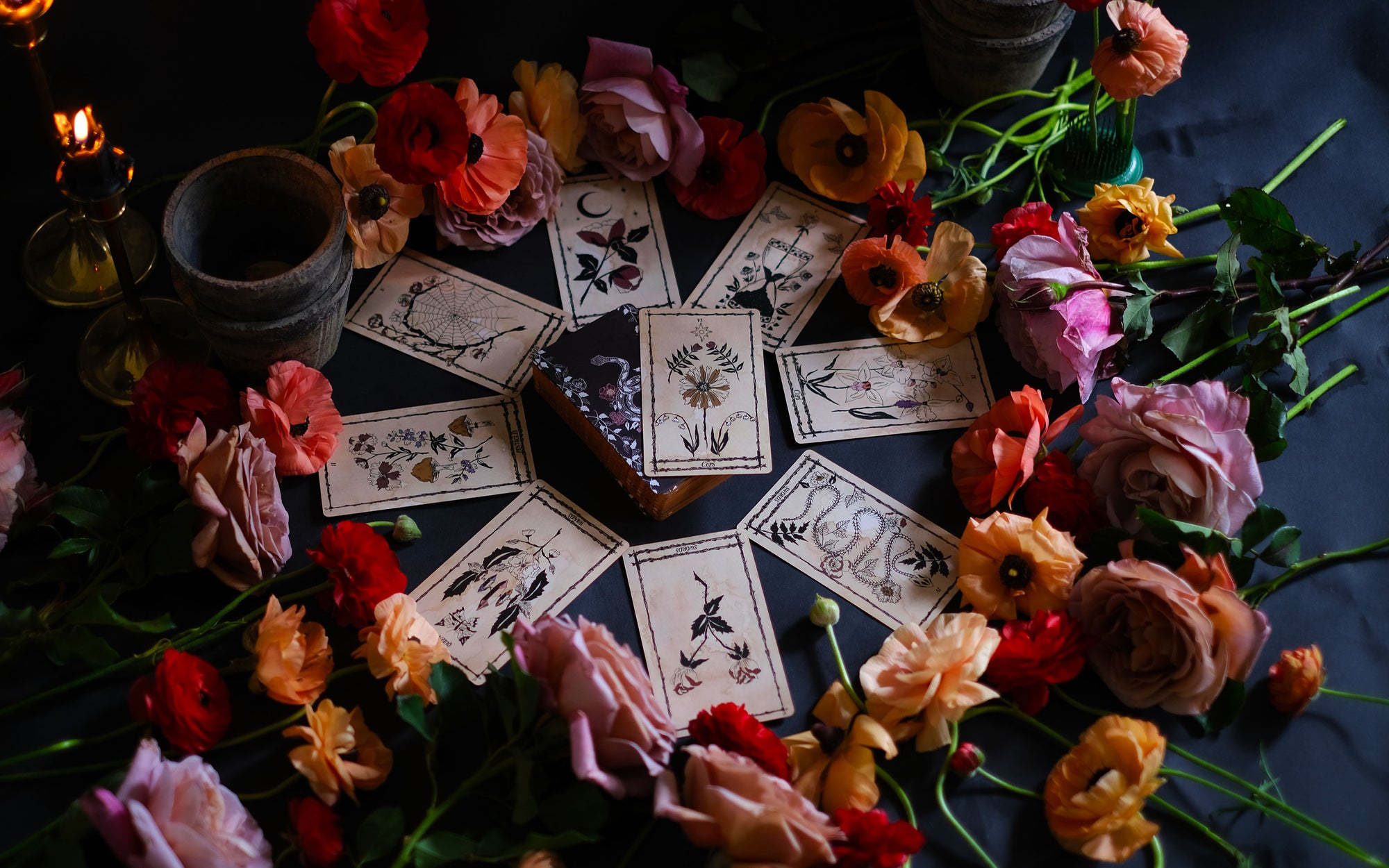 Botanical tarot card deck, the Ophidia Rosa, is hand illustrated, reflecting plants and flora, the natural world and the garden. Each of these Major and Minor Arcana Tarot cards is rooted within the seasons, mythology and traditional Tarot meaning.