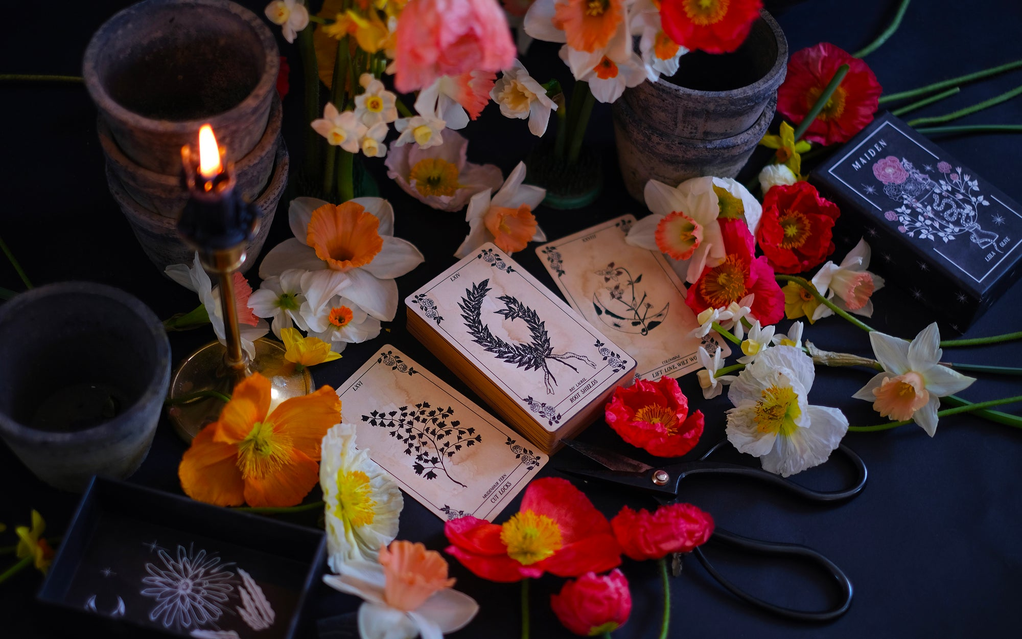 Botanical Tarot and Botanical Oracle card decks, illustrated and painted by hand. Each of these botanical and flora inspired, intuitive tarot decks delves into the garden and the natural world while remaining rooted in mythology and tradition.