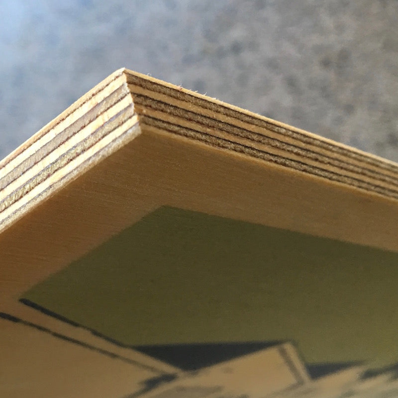Photograph of plywood panel edges.