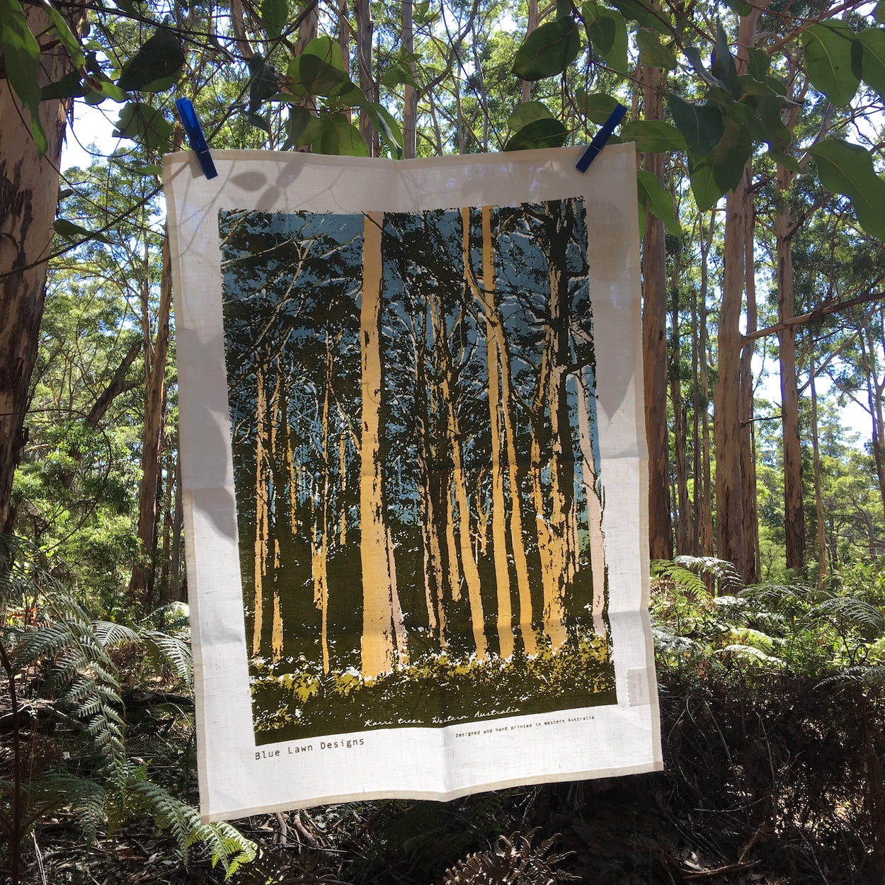 Photograph of a karri trees tea towel hanging in a karri forest.