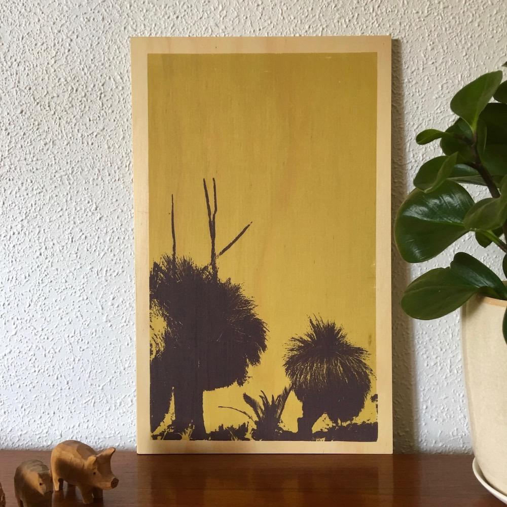 Photo of Western Australian grass trees screenprinted on plywood.