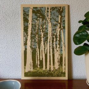 Photo of Western Australian karri trees screenprinted on plywood.