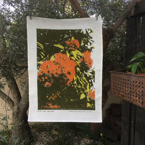 Photo of red flowering gum screenprinted on a tea towel.