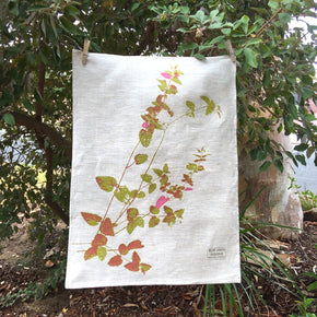 Velvet bush on oat-coloured tea towel