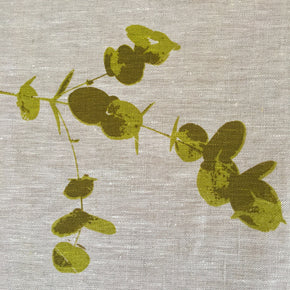 Baby gumleaves on oat-coloured tea towel