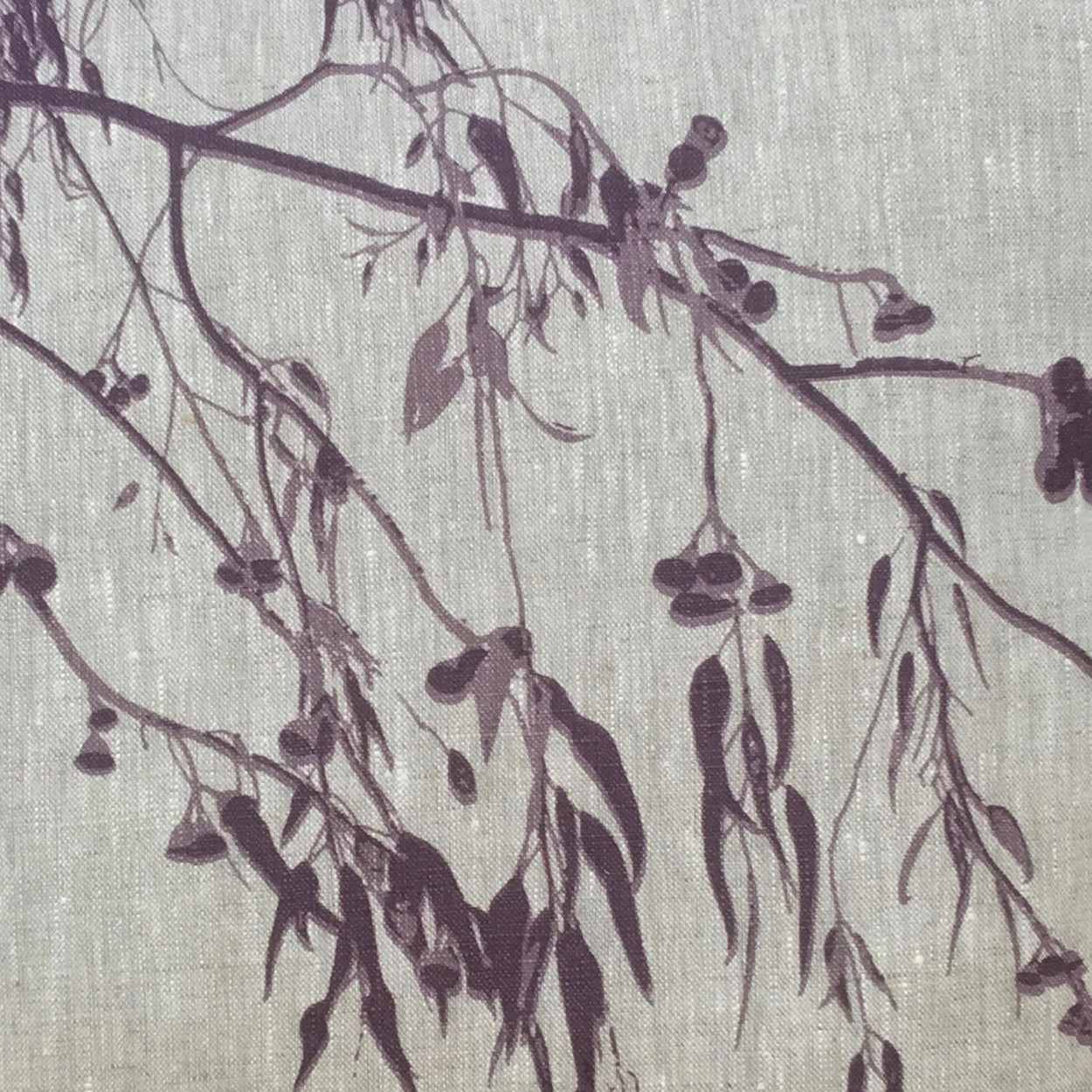 Eucalyptus on oat-coloured tea towel