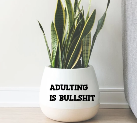 Adulting is Bullshit Vinyl Decal