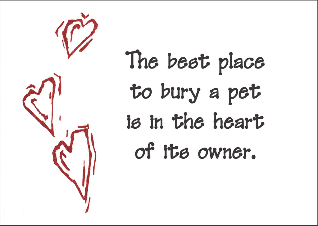 Best place - all pets