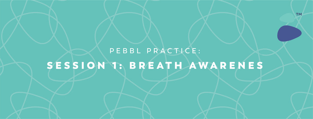 Pebbl Practice Session 1: Breath Awareness