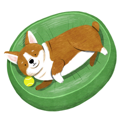 Illustration of Corgi lying on dog bed