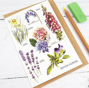 British Flowers Card Set (5 Cards) Illustrated by Louise Jennifer Design