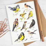 Load image into Gallery viewer, Garden Birds Card Set (5 Cards) Illustrated by Louise Jennifer Design