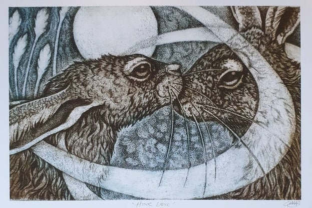Hare Rectangle Cards by artist Louise Scott