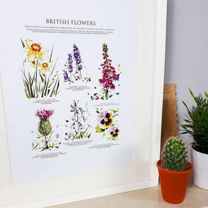 A3 Illustrated Print by Jennifer Louise Design