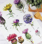 Load image into Gallery viewer, Thistle Tea Towels Illustrated by Louise Jennifer Design